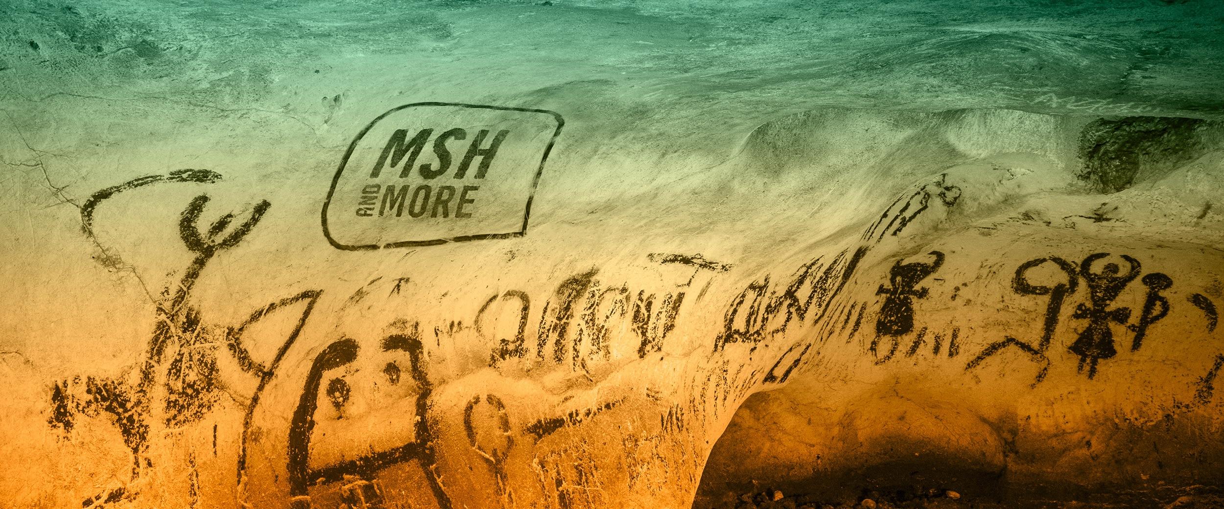 Streetart mit MSH-Logo